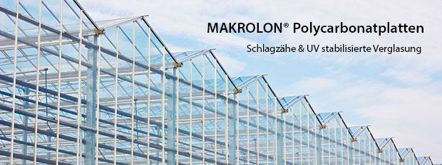 MAKROLON® Polycarbonat Platten Zuschnitte