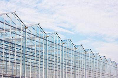 Kunststoffplatten Dach aus Polycarbonat